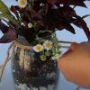 YRC DIY hanging planter